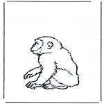 Ausmalbilder Tiere - Affe 2