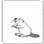 Ausmalbilder Tiere - Biber