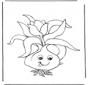 Blumenzwiebel