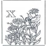 Allerhand Ausmalbilder - Buchstabe X