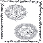 Malvorlagen Mandalas - Duo Mandala 9