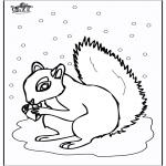 Ausmalbilder Tiere - Eichhörnchen 5