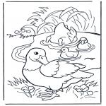 Ausmalbilder Tiere - Enten