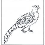 Jetztmalen de ausmalbilder tiere ausmalbilder vögel