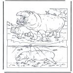 Ausmalbilder Tiere - Flusspferd 1