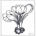 Allerhand Ausmalbilder - Frühlingsblumen 1