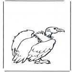 Ausmalbilder Tiere - Geier