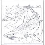 Ausmalbilder Tiere - Haie