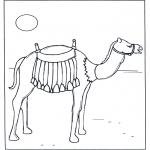 Ausmalbilder Tiere - Kamele in der sonne