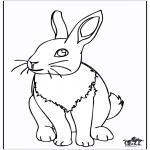 Ausmalbilder Tiere - Kaninchen 4