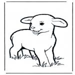 Ausmalbilder Tiere - Lämmchen
