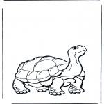Ausmalbilder Tiere - Landschildkröte