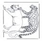 Löwe und Leopard