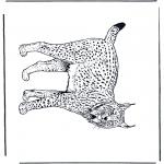 Ausmalbilder Tiere - Luchs