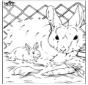 Malen nach zahlen Kaninchen