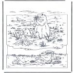 Ausmalbilder Tiere - Murmeltier