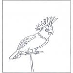 Ausmalbilder Tiere - Papagei 4