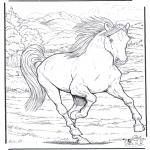 Ausmalbilder Tiere - Pferd 4