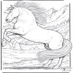 Ausmalbilder Tiere - Pferd 5