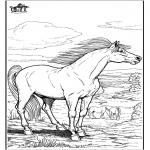 Ausmalbilder Tiere - Pferd 9