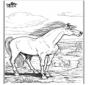 Pferd 9