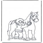 Ausmalbilder Tiere - Pferd bürsten