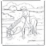 Ausmalbilder Tiere - Pferd im Wasser 1