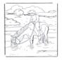 Pferd im Wasser 1