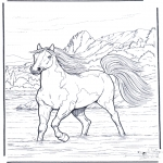 Ausmalbilder Tiere - Pferd im Wasser 2