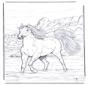 Pferd im Wasser 2