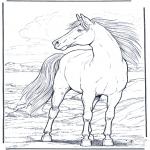 Ausmalbilder Tiere - Pferd im Wind