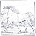 Ausmalbilder Tiere - Pferd in Gallopp