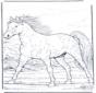 Pferd in Gallopp