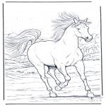 Ausmalbilder Tiere - Pferd in Galopp