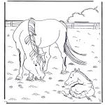 Ausmalbilder Tiere - Pferd und Fohlen