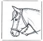 Pferdekopf 2