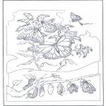 Ausmalbilder Tiere - Schmetterlinge 2
