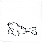 Ausmalbilder Tiere - Seehund 1