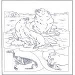 Ausmalbilder Tiere - Seelöwen