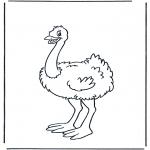Ausmalbilder Tiere - Strauss 1