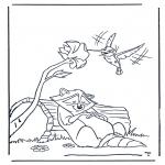 Ausmalbilder Tiere - Waschbär und Kolibri