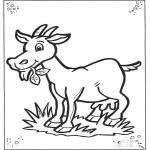 Ausmalbilder Tiere - Ziege 2