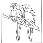 Ausmalbilder Tiere - Zwei Aras